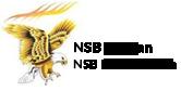 NSB-darpan-bpo-services